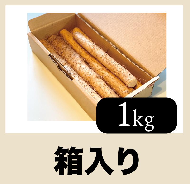 【1kg 箱入り】つしまじねんじょ