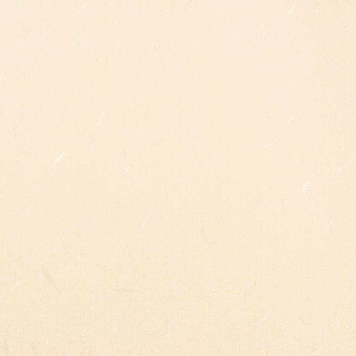 月華ニューカラー B4サイズ(50枚入) No.4 ベージュ