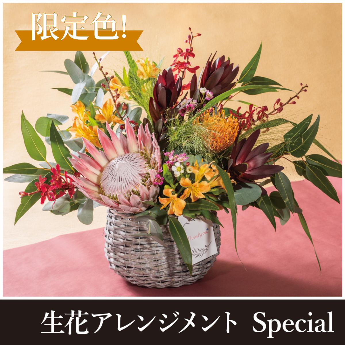 敬老の日限定販売】生花アレンジメントSpecial
