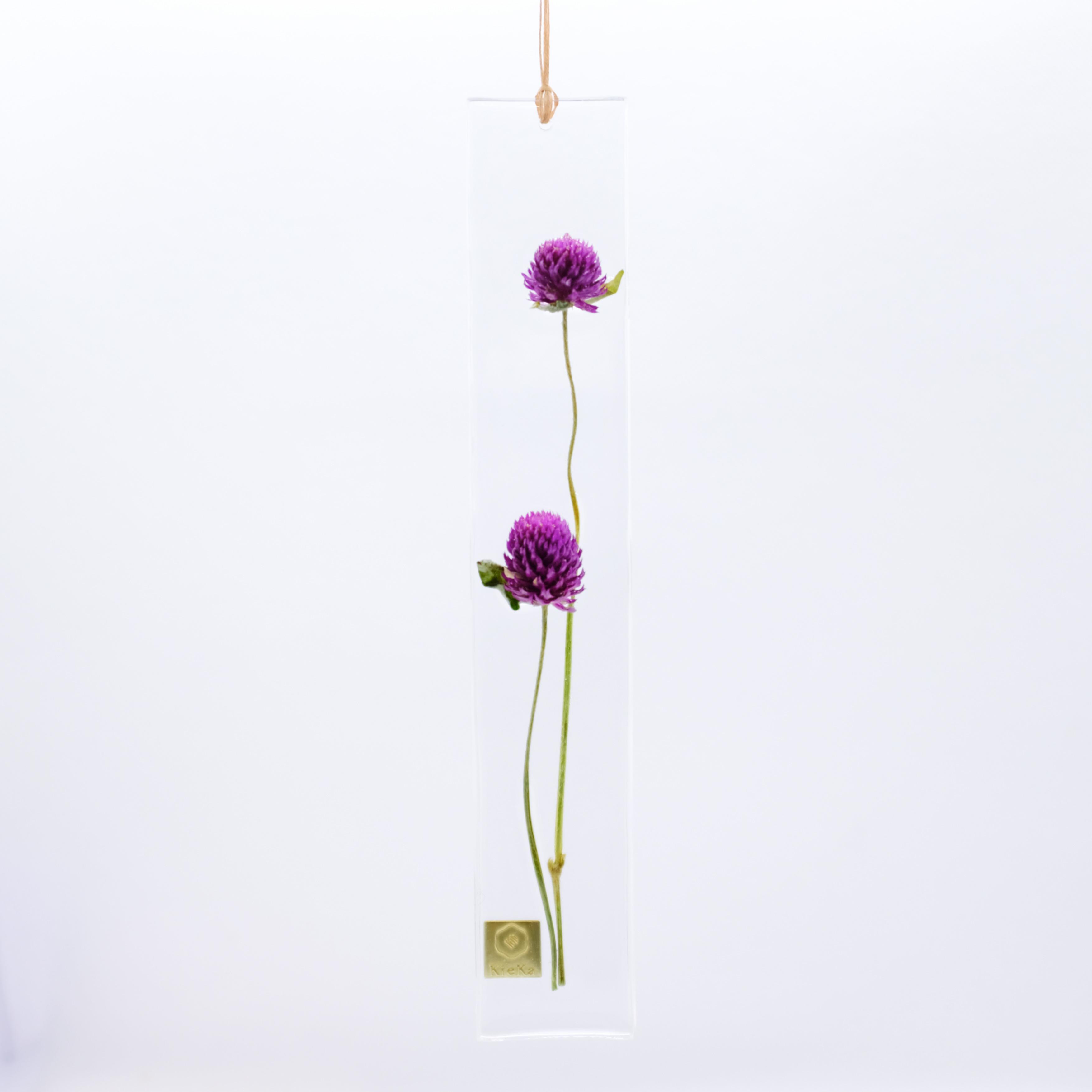 dried flower S センニチコウ パープル