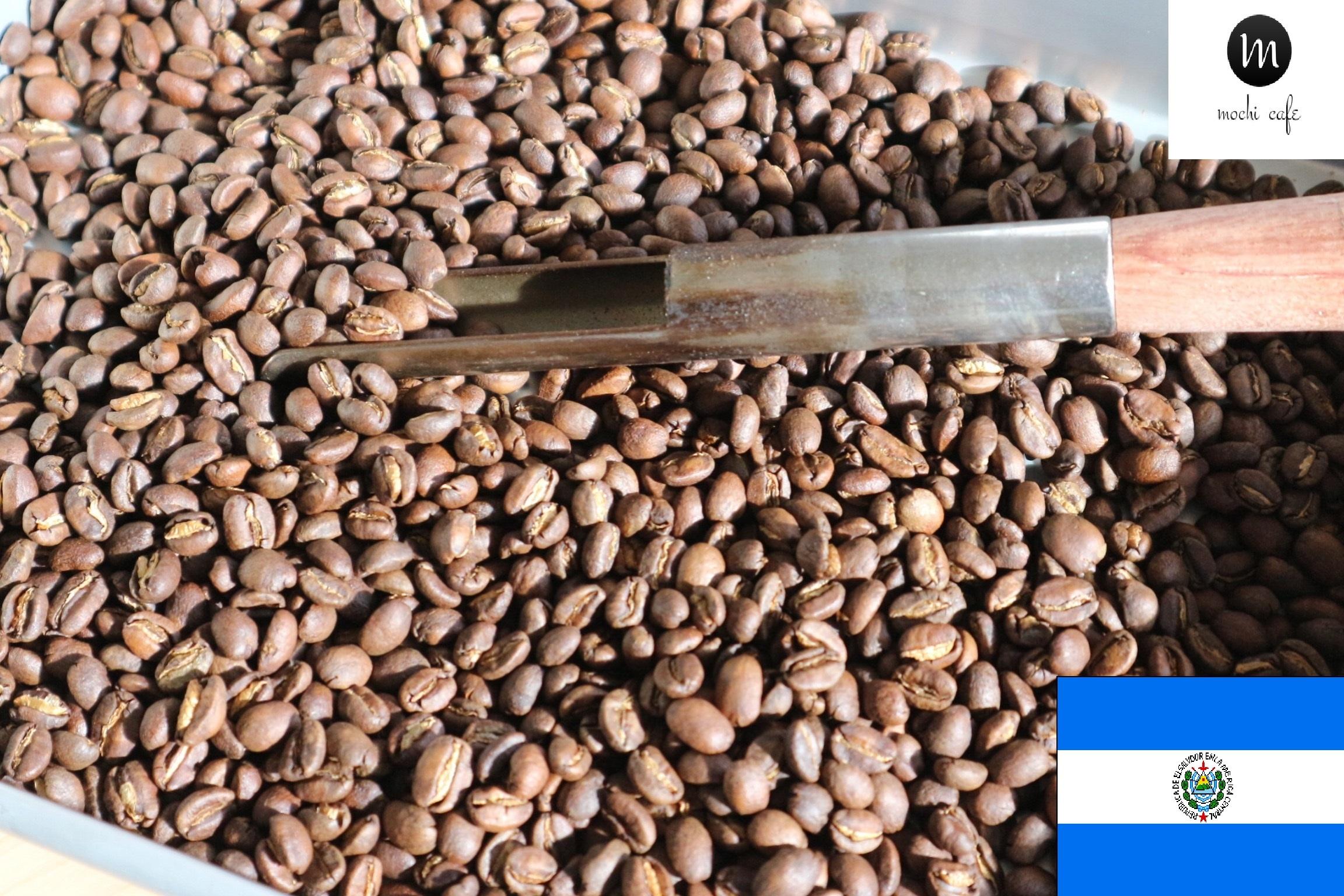 自家焙煎珈琲 エルサルバドル ホセ オヴィディオ フローレス - フィンカ エルトロンピージョ-パカマラ - ウォッシュド 100g