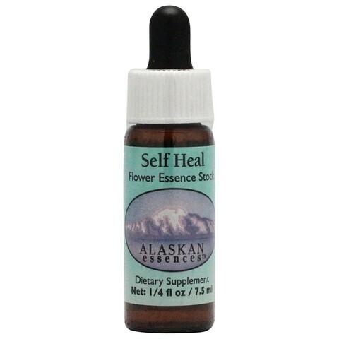 セルフヒール[Self Heal]