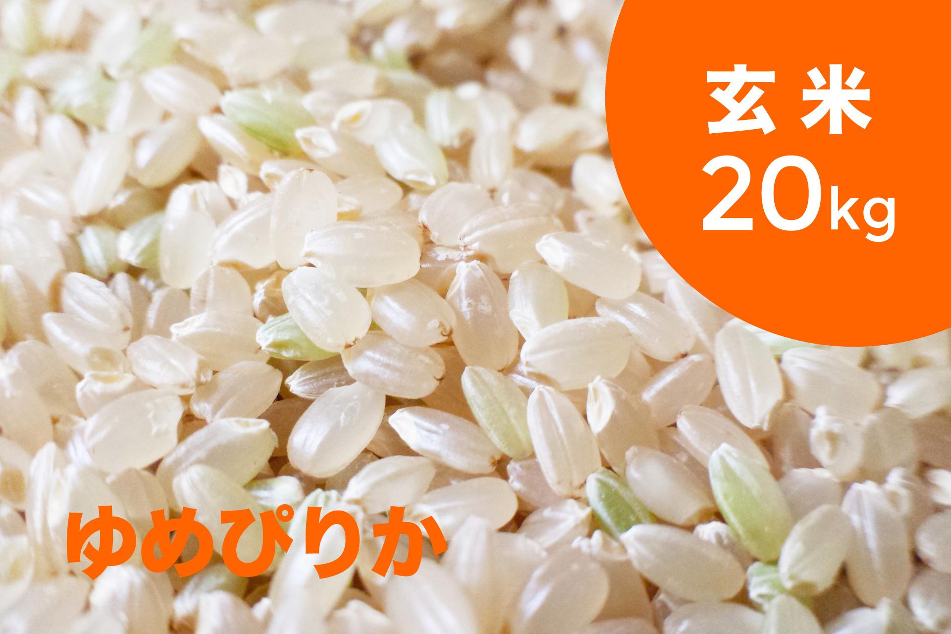 特別栽培米 ゆめぴりか(玄米)20kg【令和2年産 】