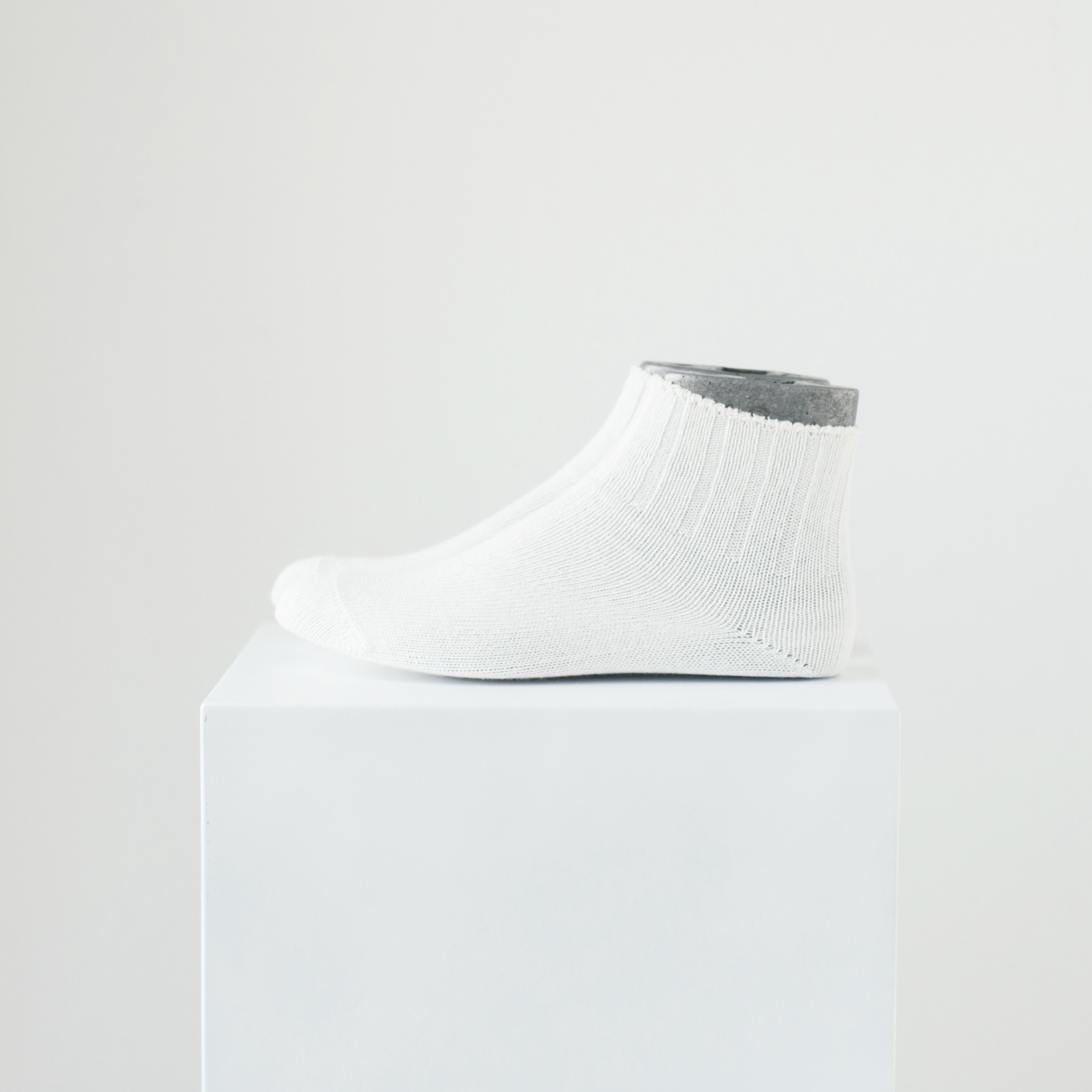 ANTARES - WHITE - 画像1