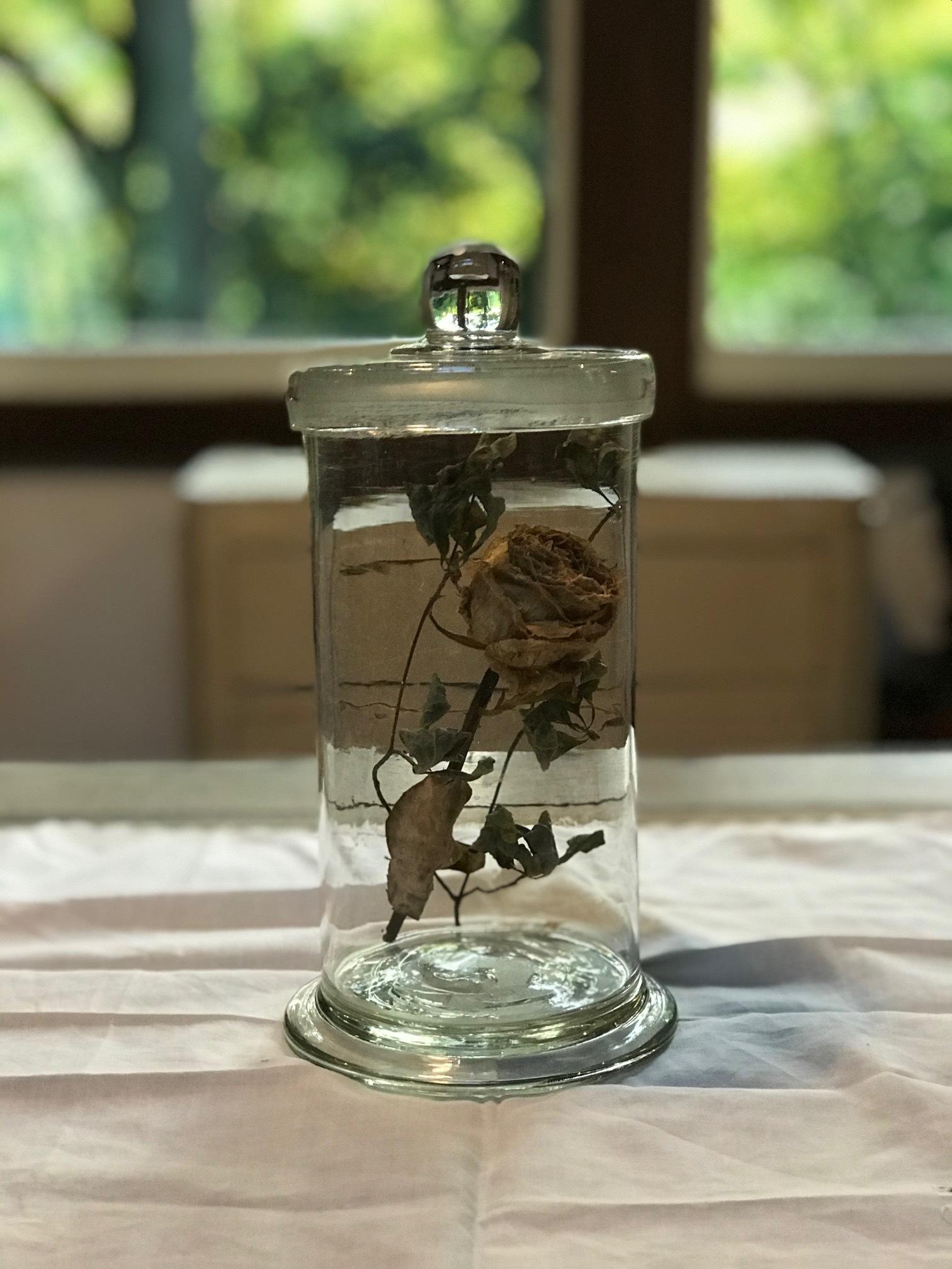 古い標本瓶 ガラス アンティーク 古道具