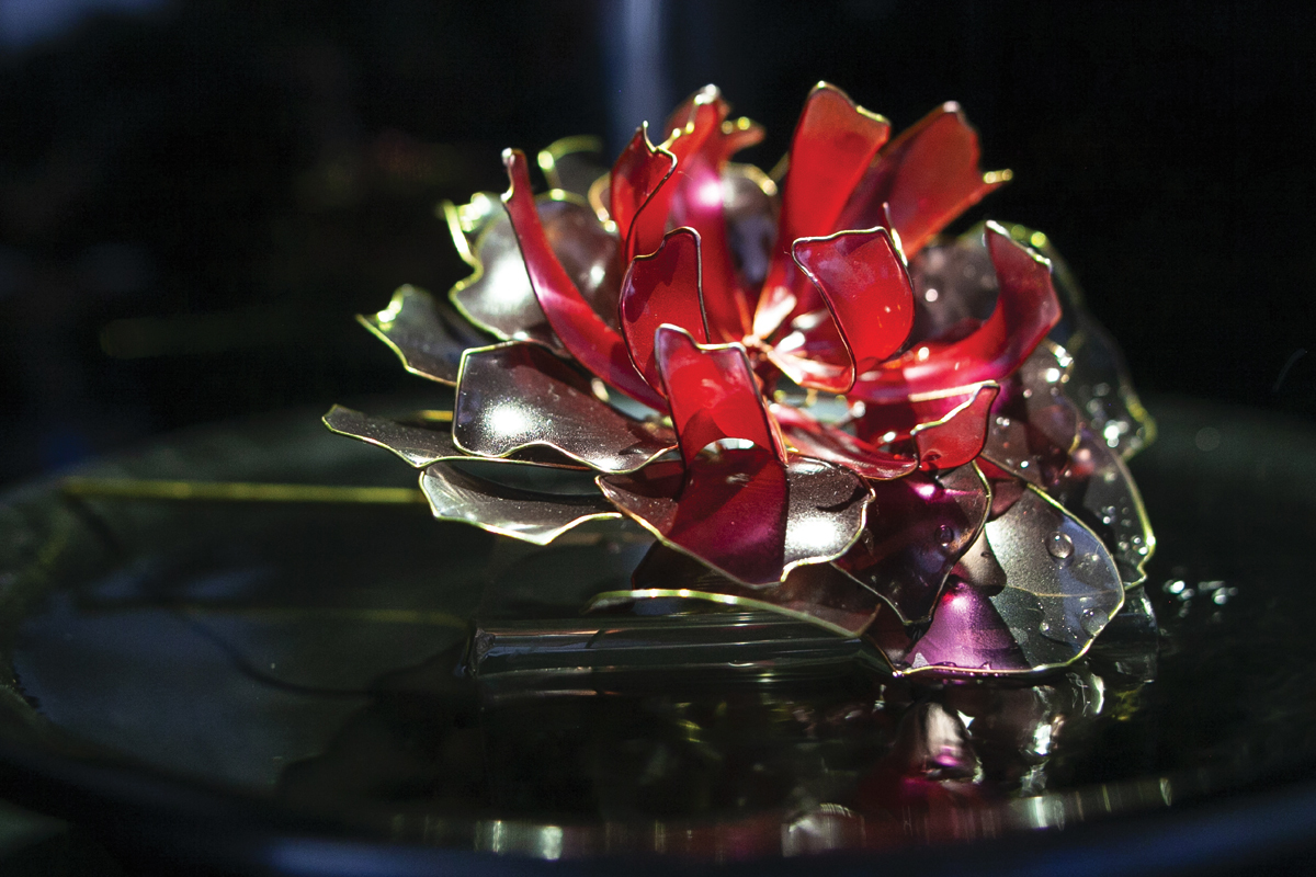 【絢爛】ー金魚花 goldfish flower