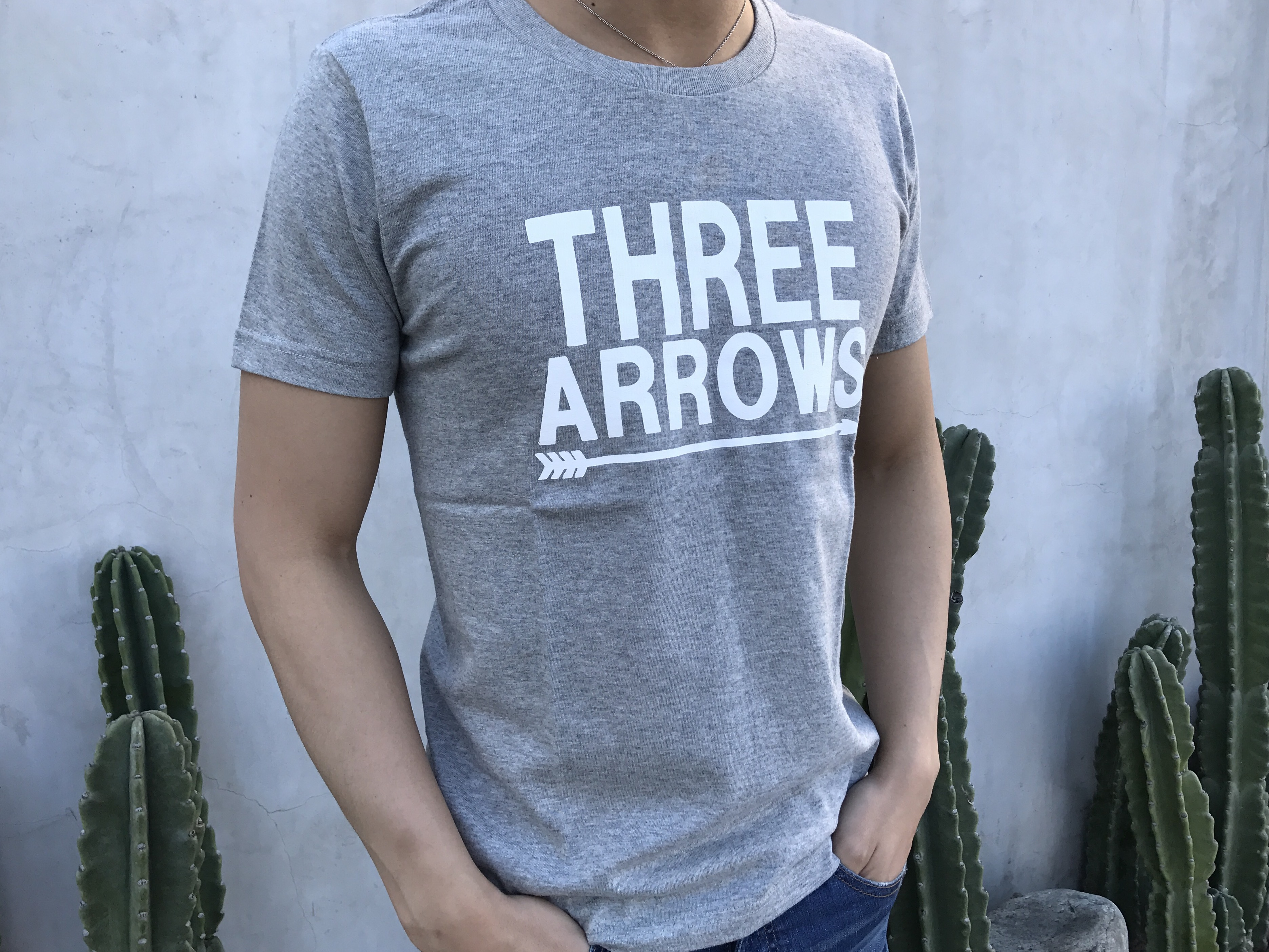 BIG THREE ARROWS Tシャツ(gray)