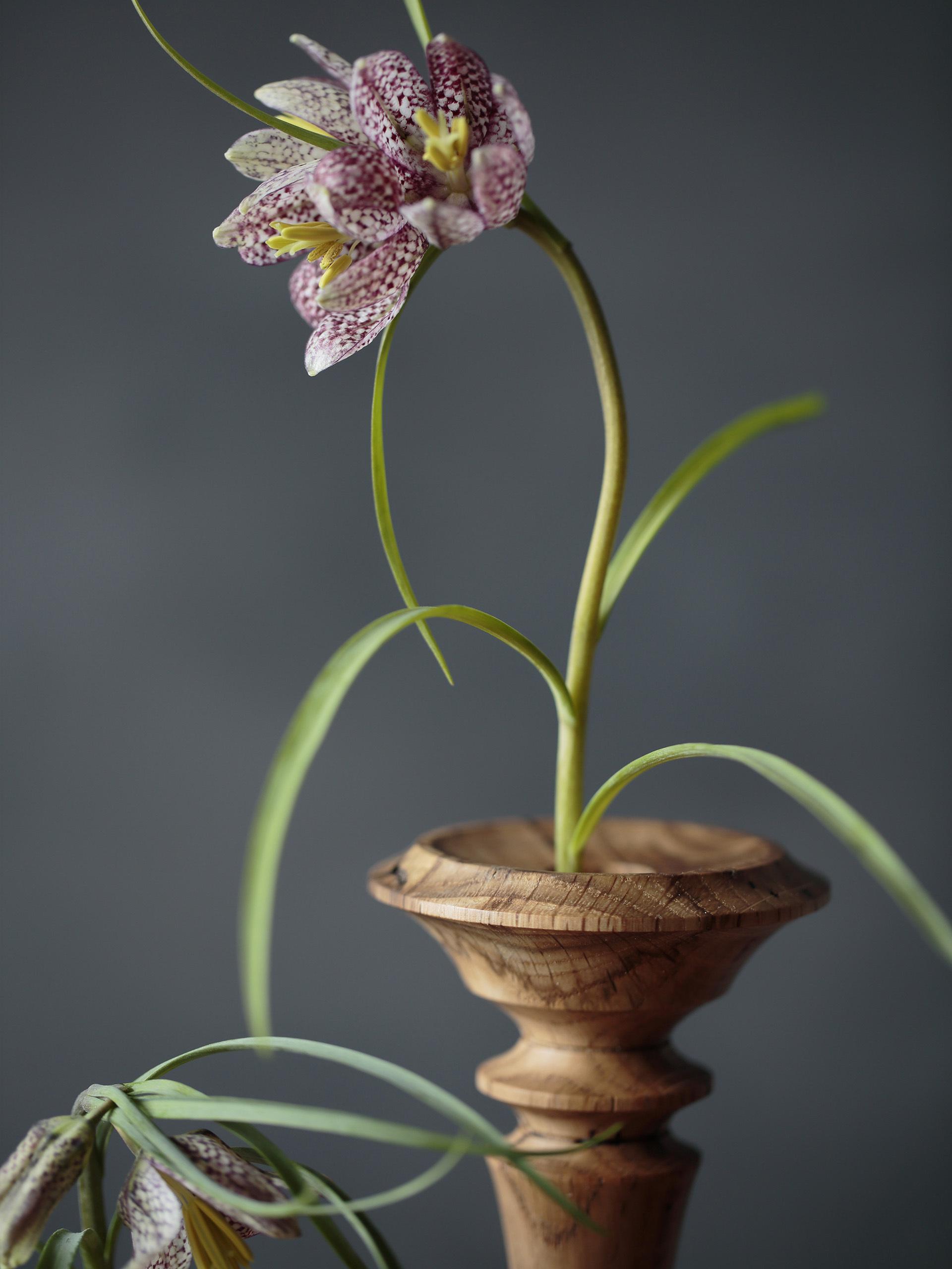 虫喰いの花器 ボビン - 画像4