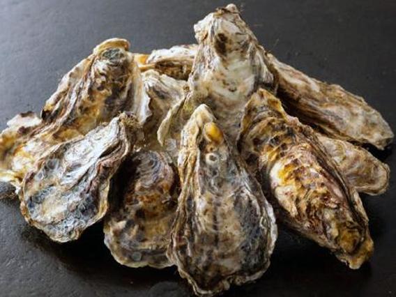 『北海道産牡蠣10kgセット』加熱調理用 ※送料別途