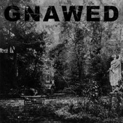 Gnawed - Feign and Cloak  CD - 画像1