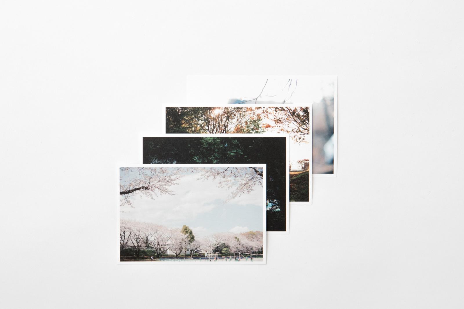 Post card [season]