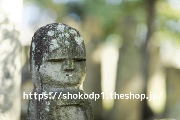 五百羅漢(北条石仏)011