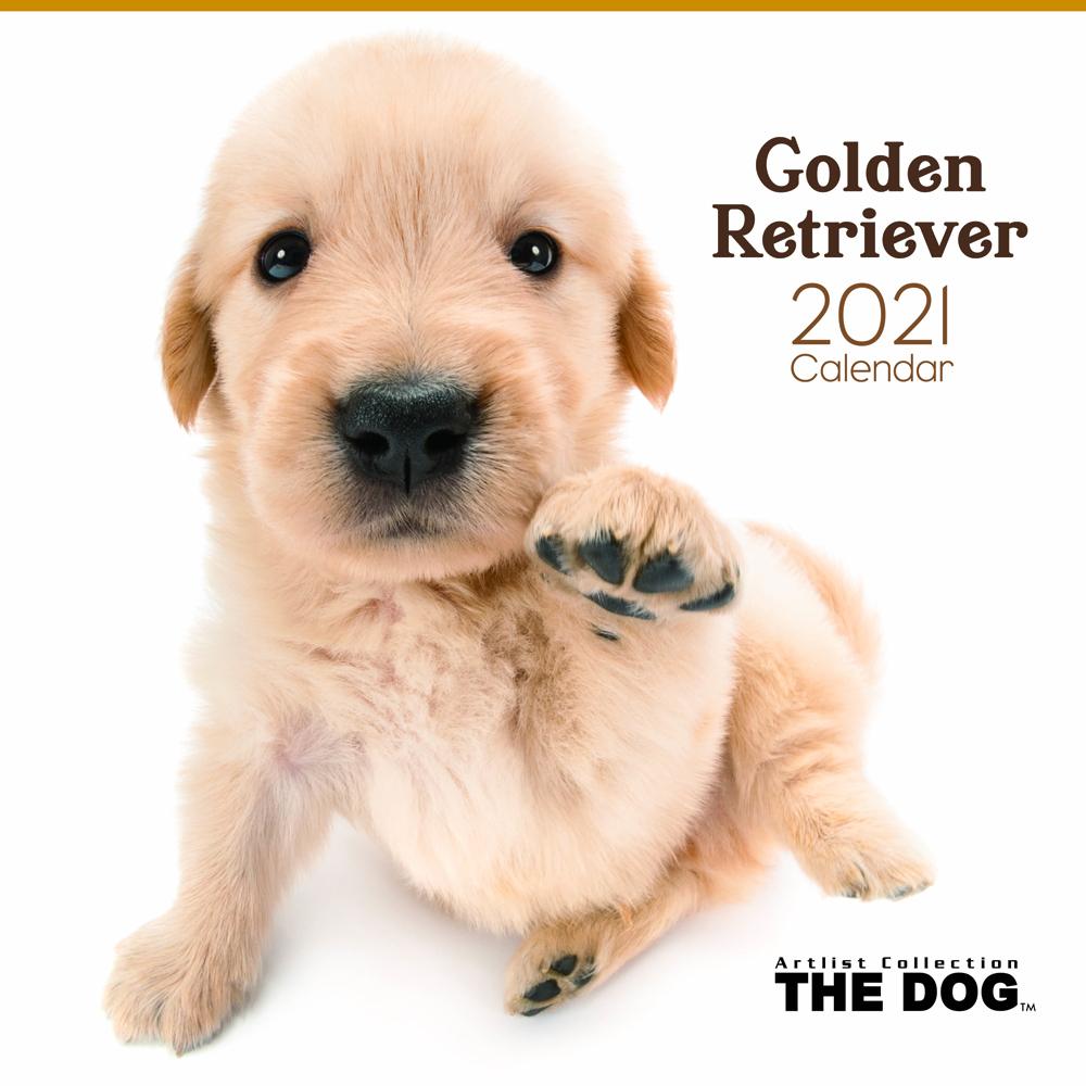 2021年 THE DOGカレンダー【大判サイズ】ゴールデン・レトリーバー