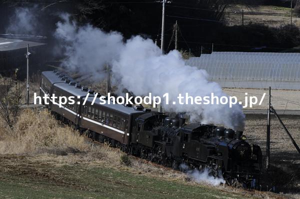 真岡鉄道・C11とC12の重連と蒸気_DSC4407