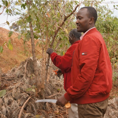 Rwanda KINAZI  ウォッシングステーション ナチュラル  ミディアムハイロースト