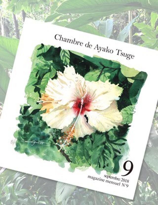 【受注生産】バックナンバー Chambre de Ayako Tsuge2018年9月号