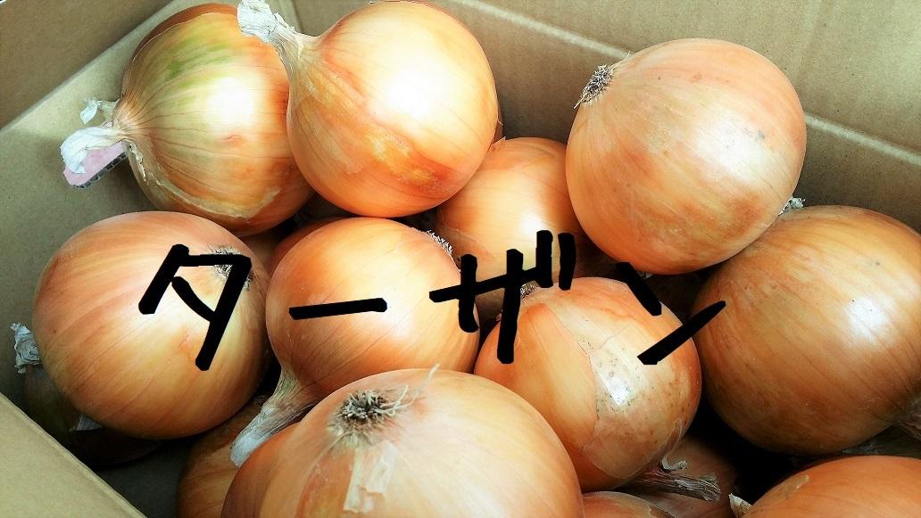 """島くる玉ねぎ """"ターザン""""(5kg)【926円(税別)】"""