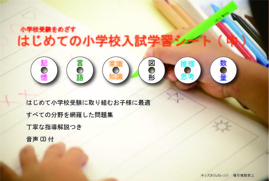 はじめての小学校入試学習シート(中巻)