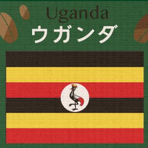 【無農薬/有機栽培】ウガンダ・ティピカAA(小袋200g)