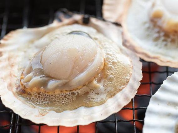 食べ放題級!ホタテ50枚‼北海道産片貝ホタテ(5袋セット)※送料別途