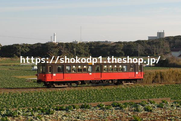 銚子電鉄800形と畑DSC_0242