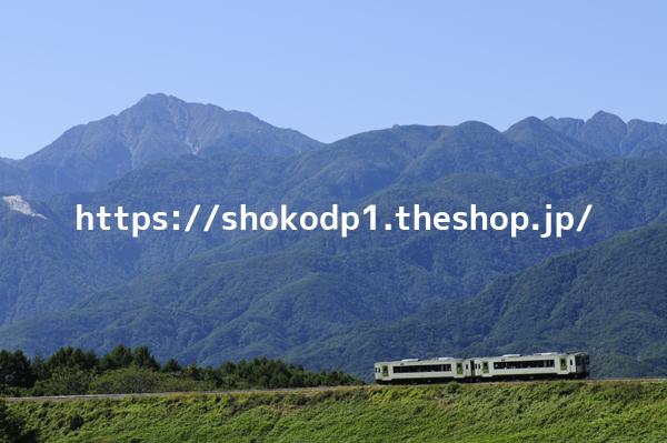 キハ110系・小海線と山_DSC1260