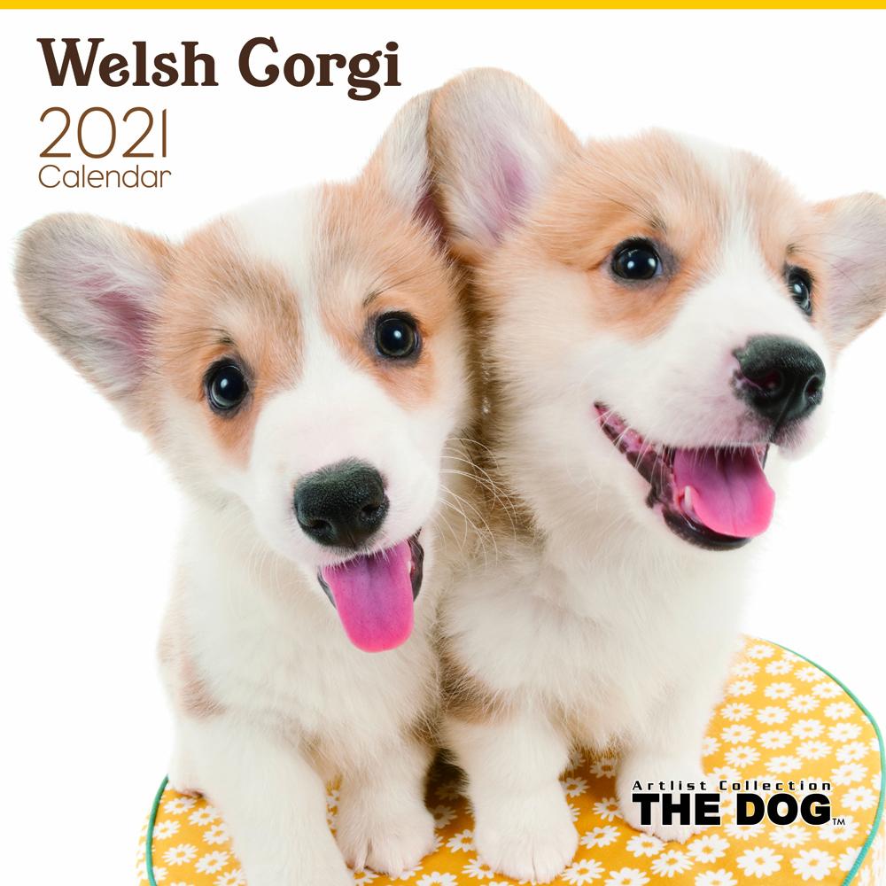 2021年 THE DOGカレンダー【大判サイズ】ウェルシュ・コーギー