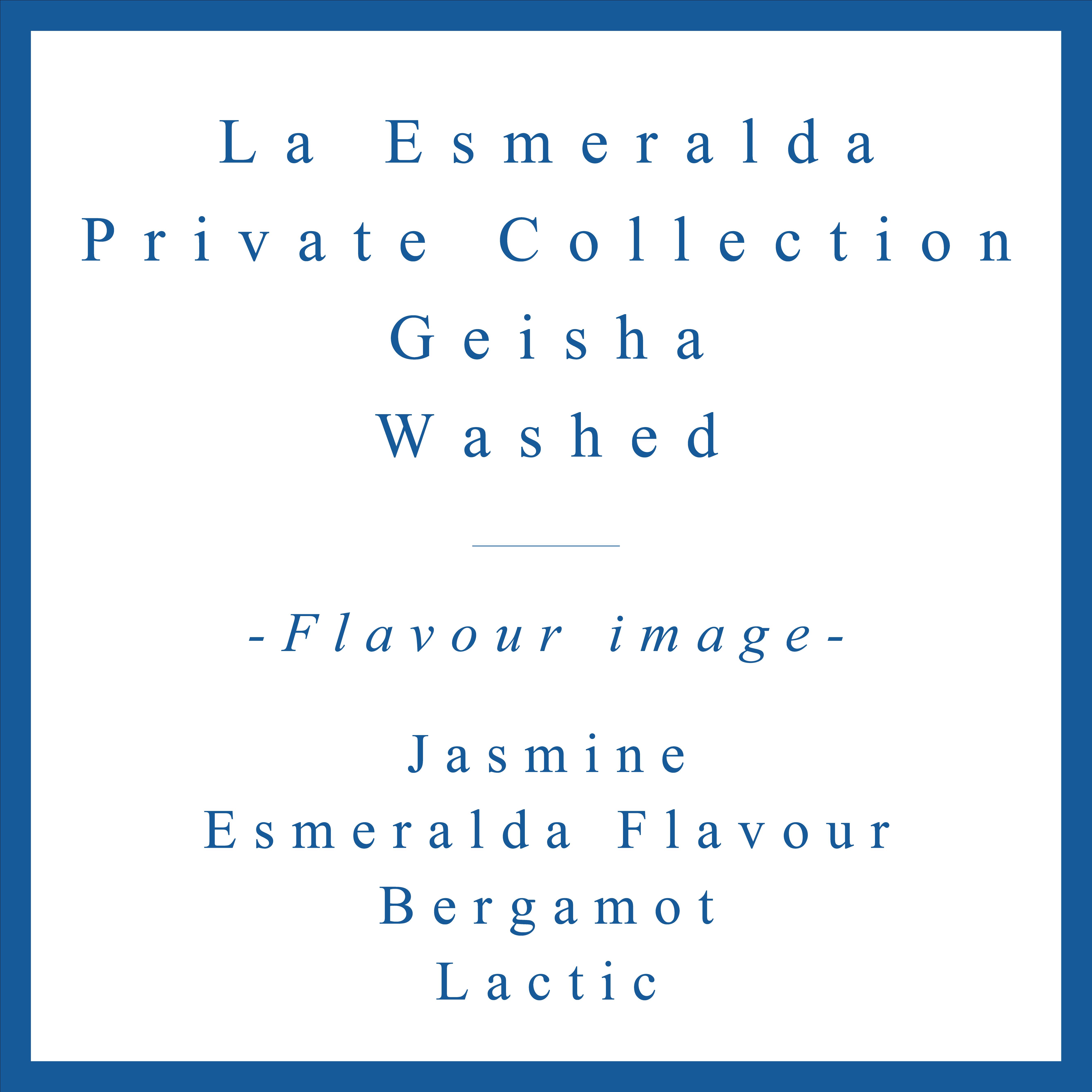 La Esmeralda Private Collection Geisha Washed