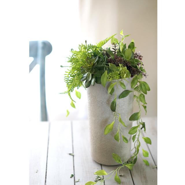 【アレンジ】  コンクリート風花器にグリーンの寄せ植えアレンジ(大)