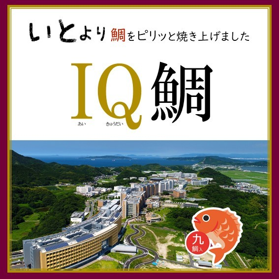 IQ鯛    九州大学