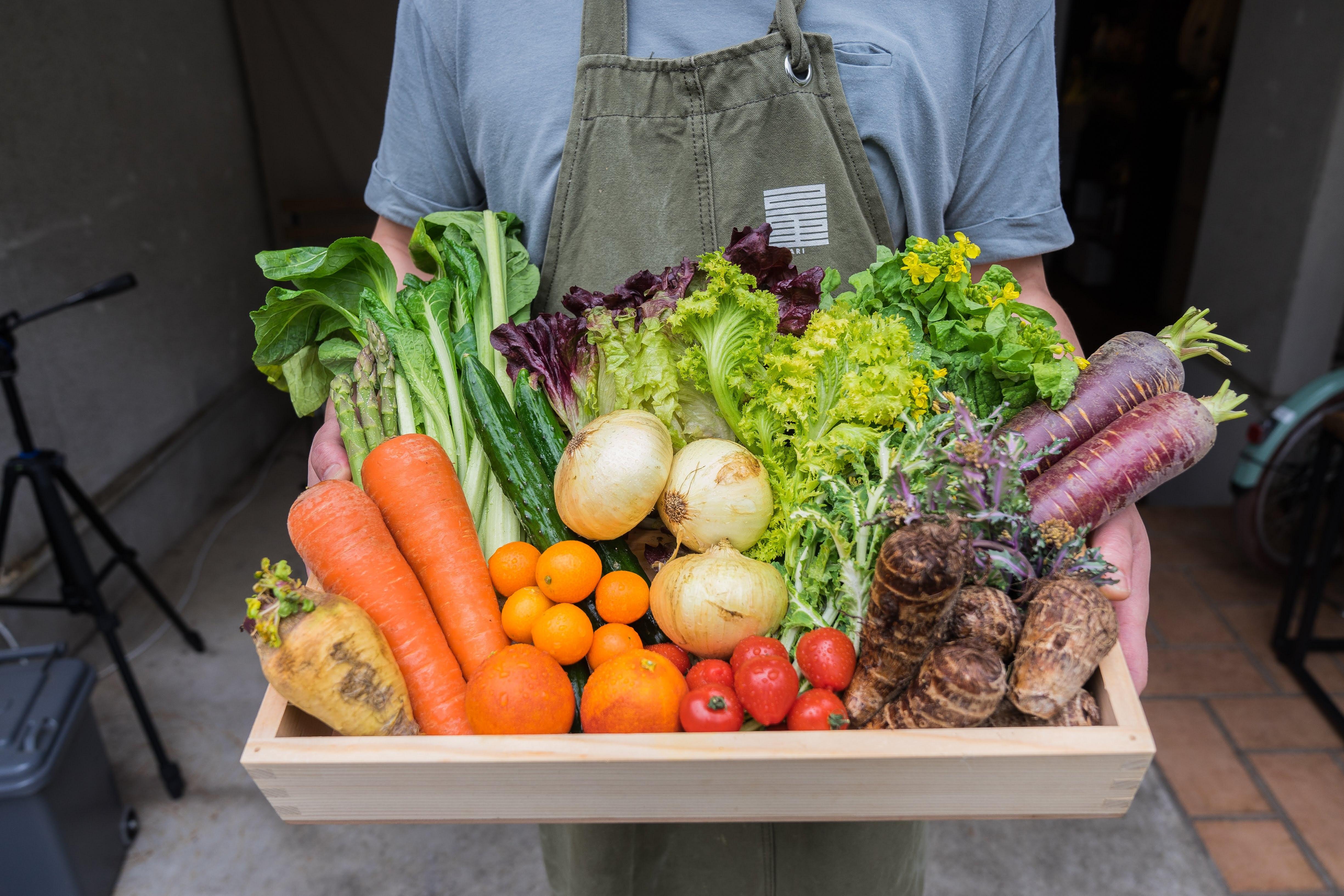 【定期便:隔週】おまかせ産直野菜・果物詰め合わせセット