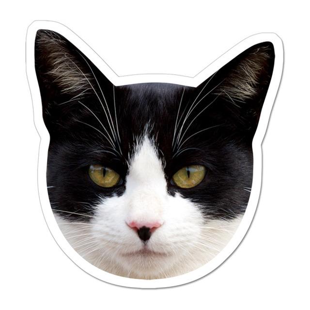 【セール】 (77kuro)  ケーマグ   実物大? 黒白猫 マグネット ステッカー 【レターパックライト可】