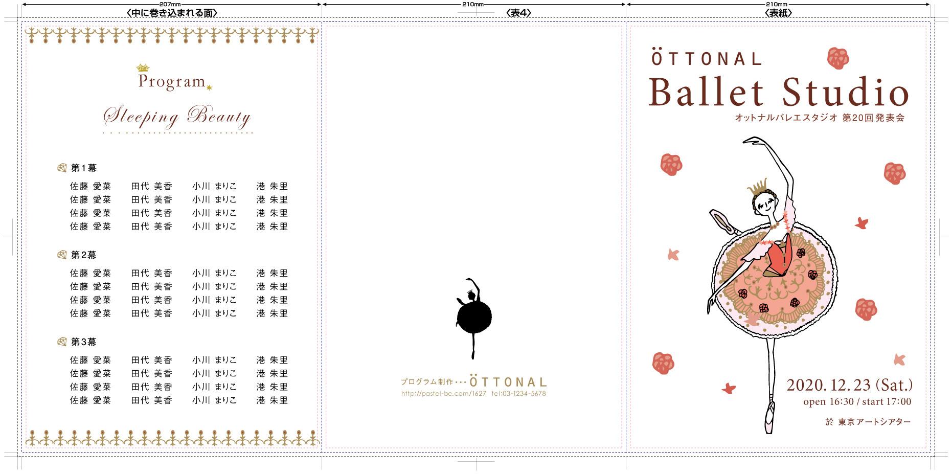 プログラム デザインオーロラ (A4,6ページ3つ折 紙135kg 100部フルカラー) - 画像2