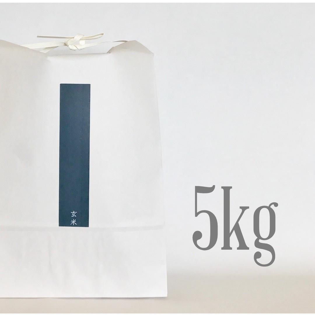 新米  玄米 ひのひかり5kg