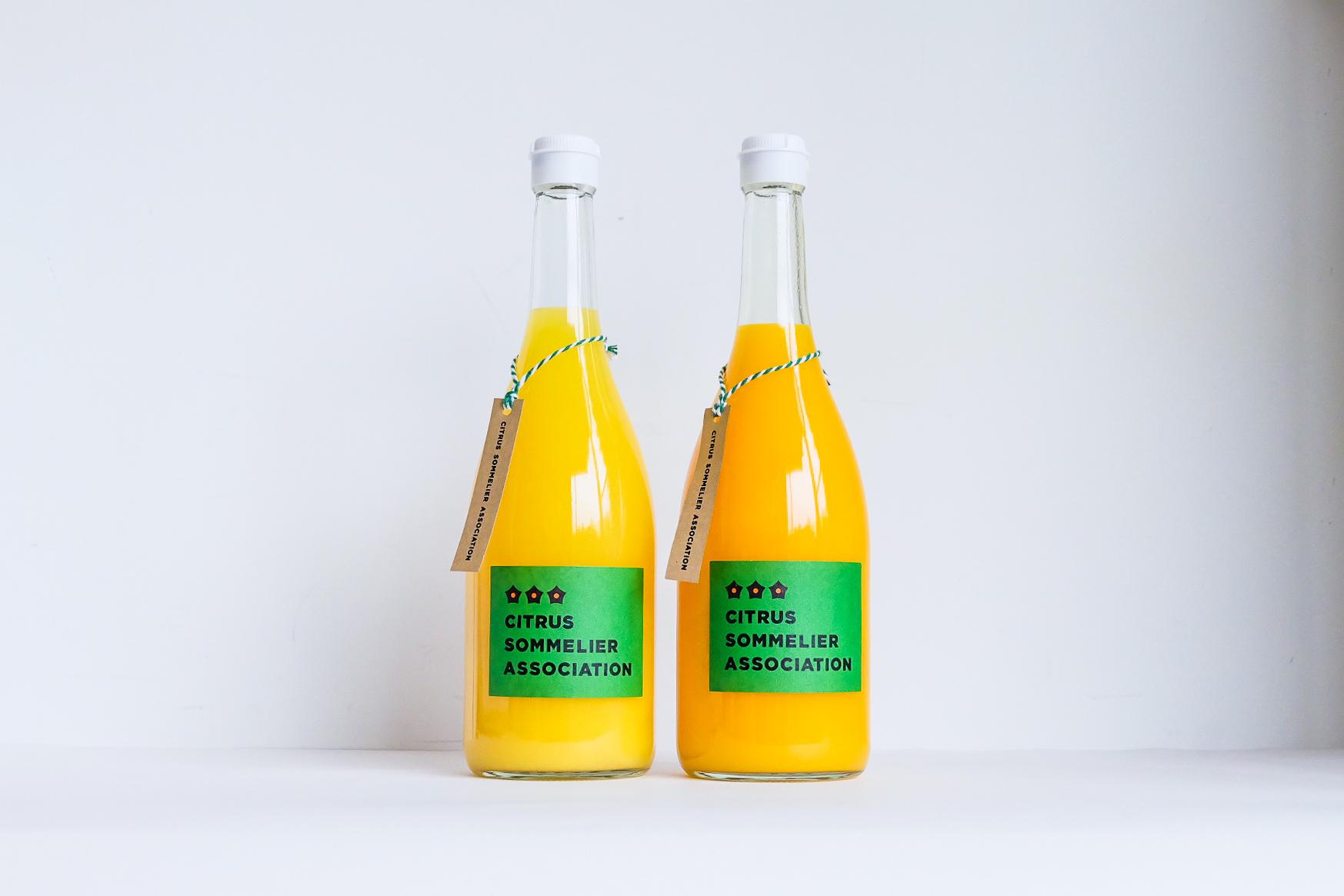 青凪セレクト 柑橘ジュースセット