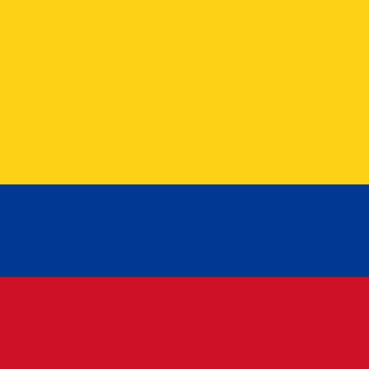コロンビア サンアグスティン 100g