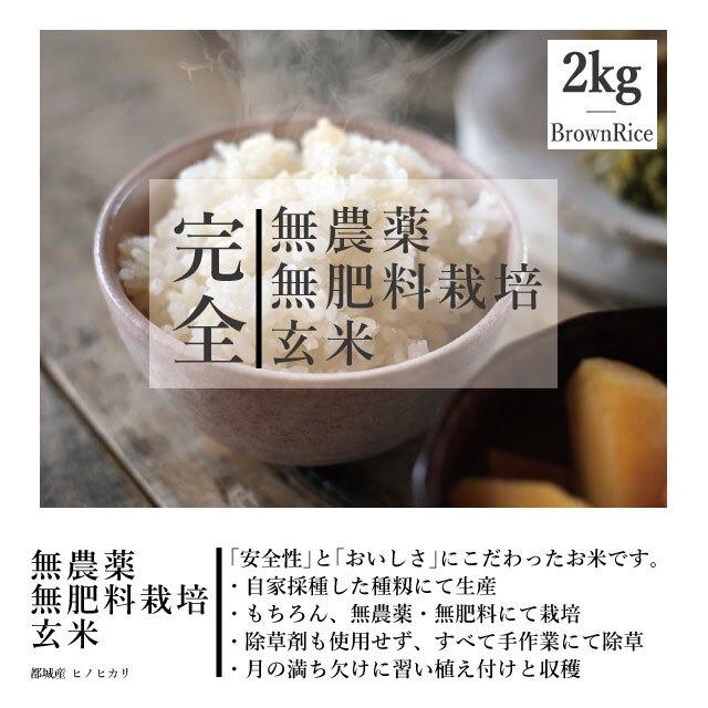 【送料別】2kg 令和元年度産 <新米> 完全無農薬・無肥料栽培 玄米 都城産ヒノヒカリ