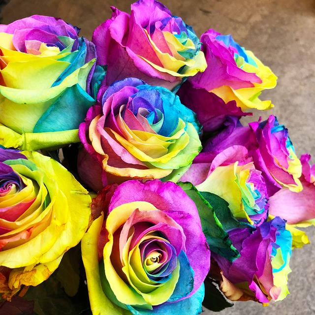 【Bouquet】Rainbow Rose Bouquet Gift(Premium)