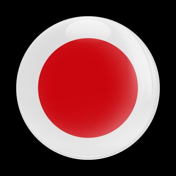 ゴーバッジ(ドーム)(CD0190 - FLAG JAPAN) - 画像1