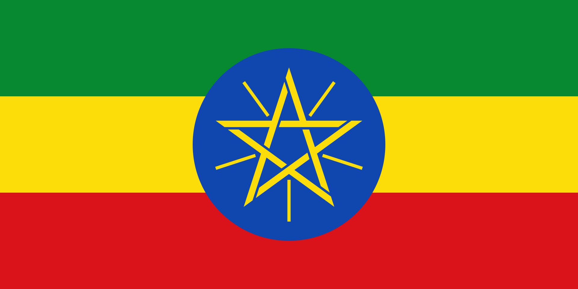 エチオピア グジG1 浅煎り 100g