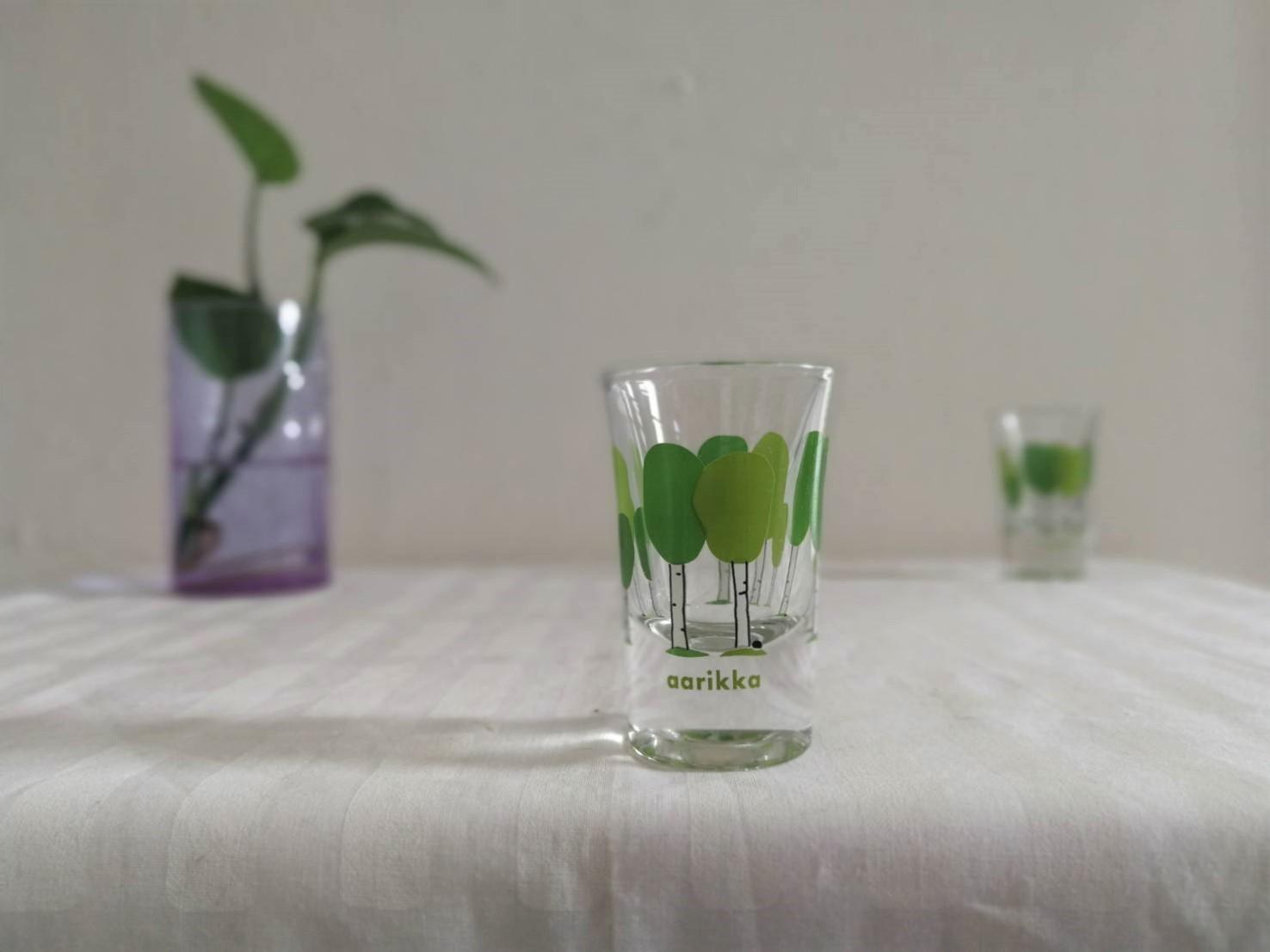 グラス / aarikka アアリッカ / Birch Grove 白樺 / USED