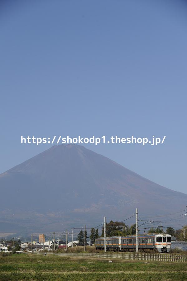 313系と富士山_DSC7898
