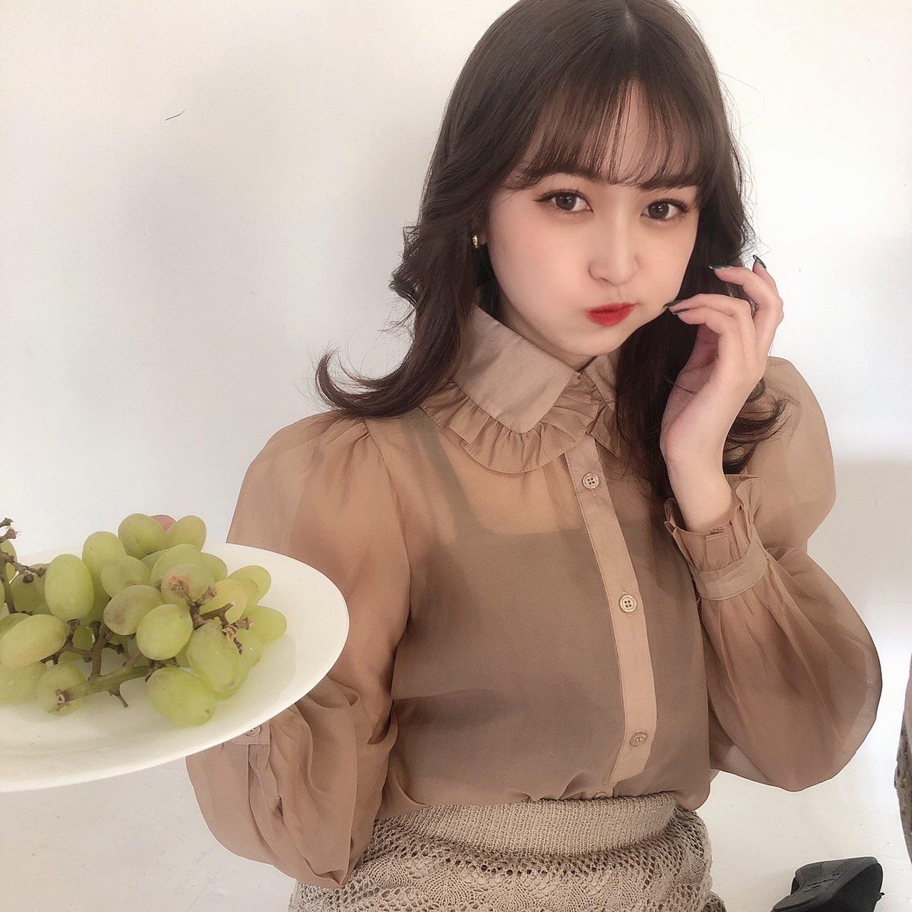 brown sheer blouse