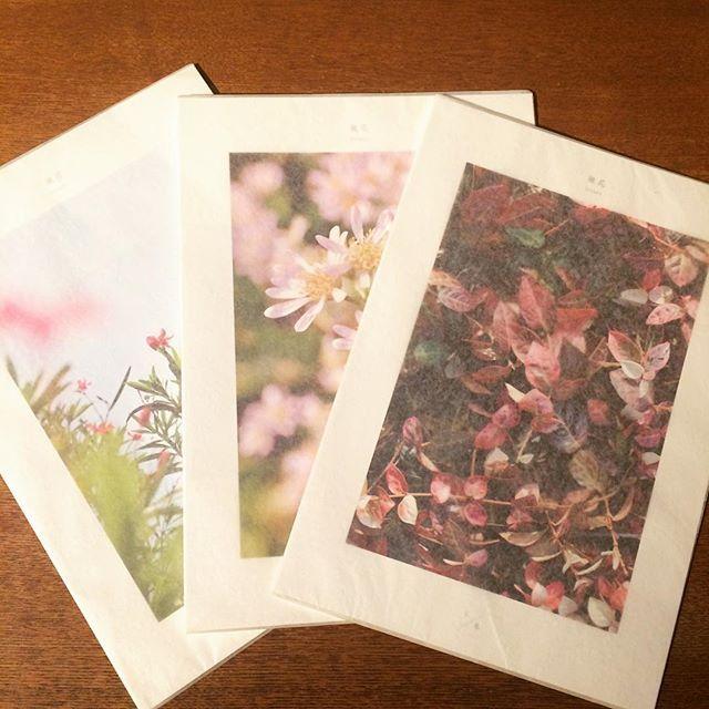 リトルプレス「微花 kasuka(かすか) 1. / 冬・秋・夏 3冊セット」 - 画像1