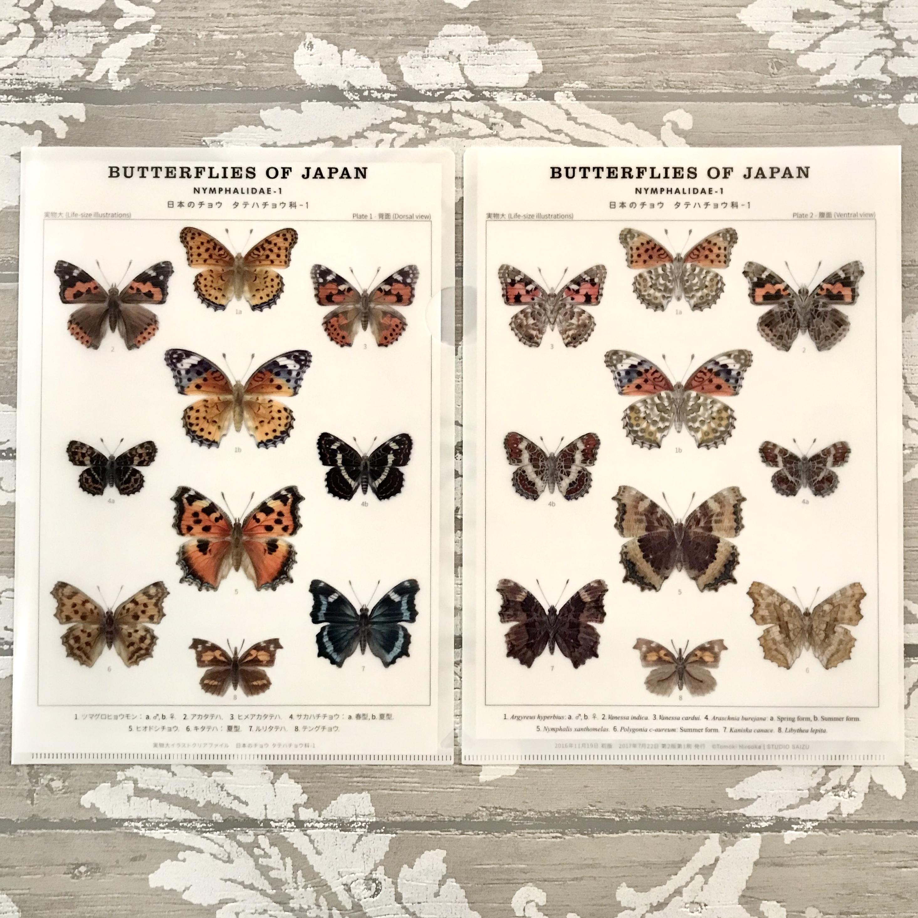 日本のチョウ タテハチョウ科 クリアファイル | アトリエリジッタ