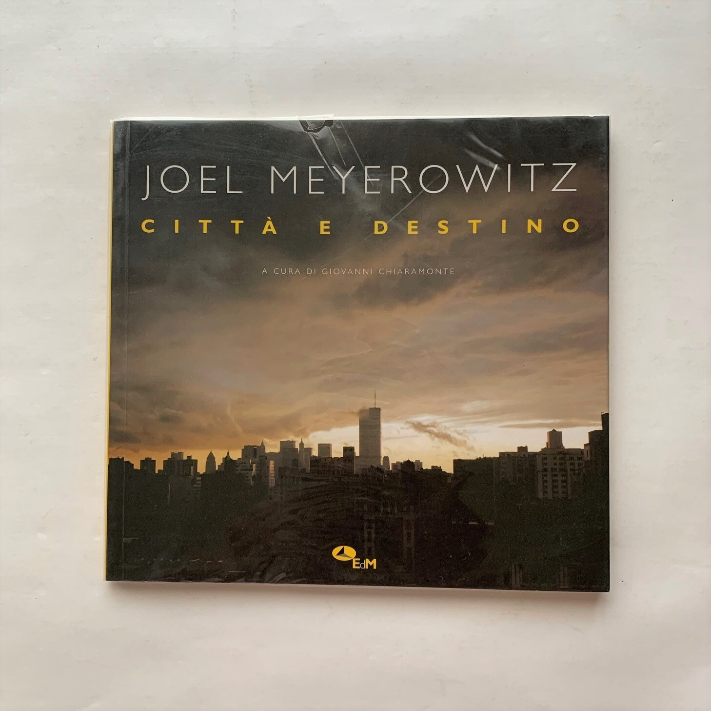 JOEL MEYEROWITZ  Città e destino /  ジョエル・マイヤーヴィッツ