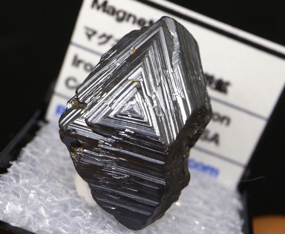 マグネタイト ケース入り クリスタル 磁鉄鉱 ユタ州産  MGT006  原石 天然石 鉱物