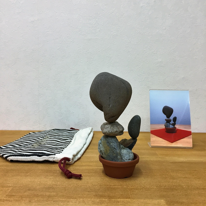 石花キット・プレミアム No.102