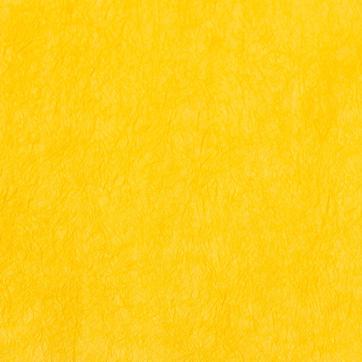 王朝のそめいろ 薄口 21番 黄支子
