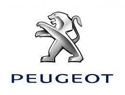 PEUGEOT 専用 Car Key Case Shrink Leather Case
